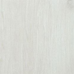 ivory-beech