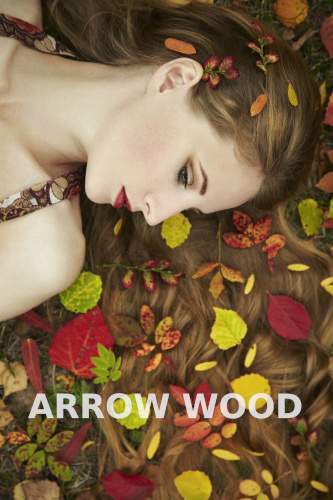 arrowood sale