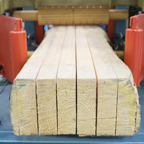 ตัดไม้
