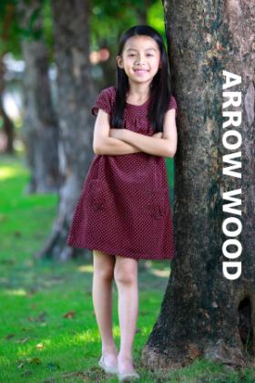 ไม้ปูพื้น arrow wood